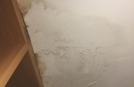 רטיבות בקיר ובתקרה – ליקויי איטום